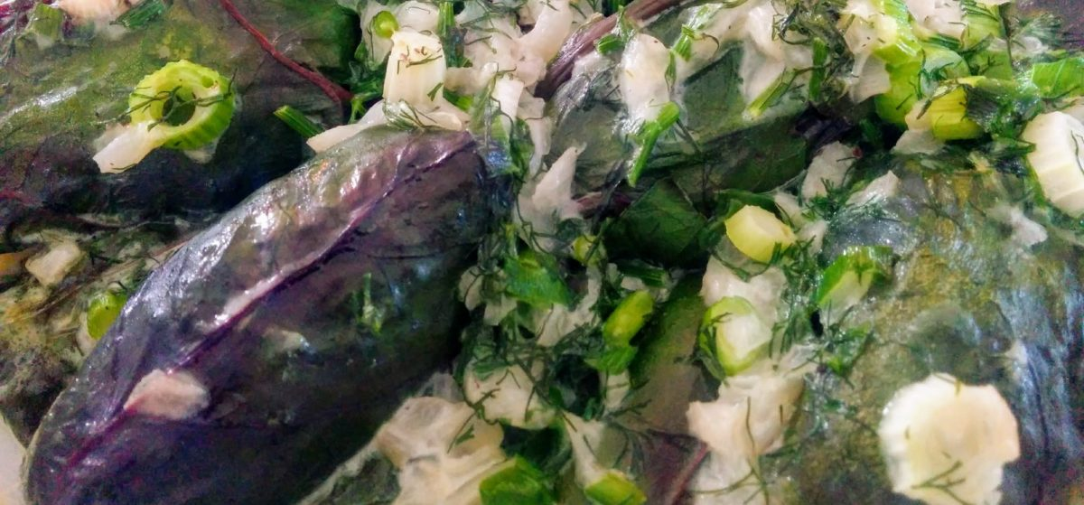 Beet leaf holubtsi baked in cream and covered in green onions and dill