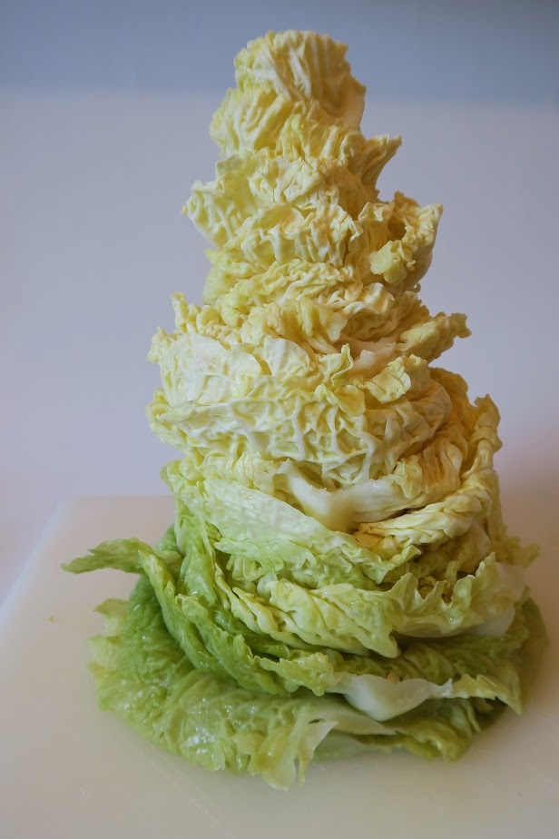 A stack of Savoy cabbage leaves with larger leaves on the bottom that form the majestic cabbage pyramid