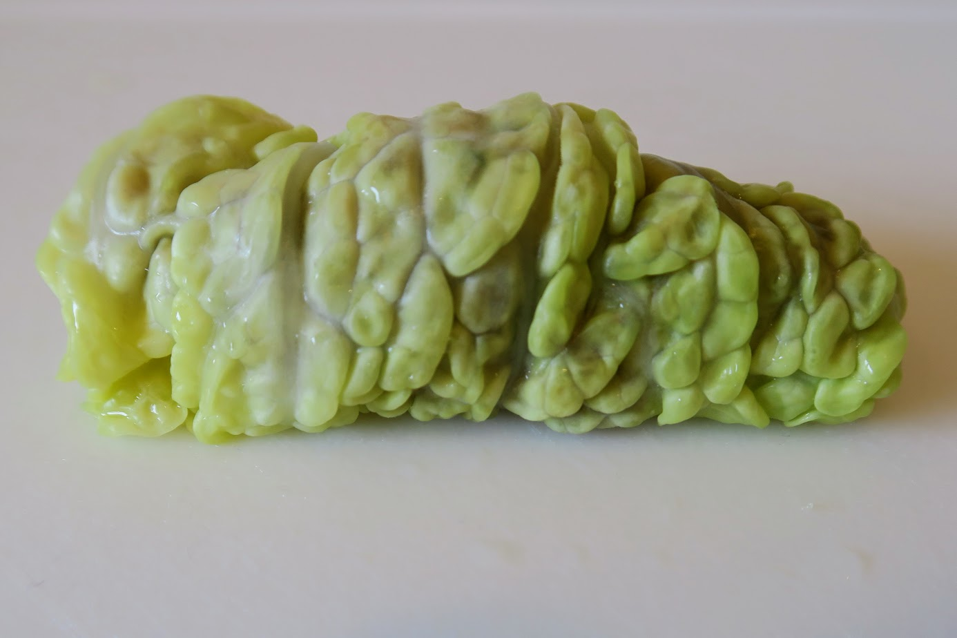 A completed cabbage roll, rolled