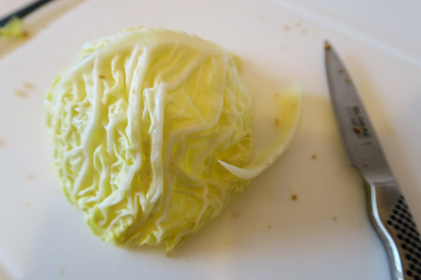 A small knife was used to trim away about 50% of the outer stem on a smaller cabbage leaf