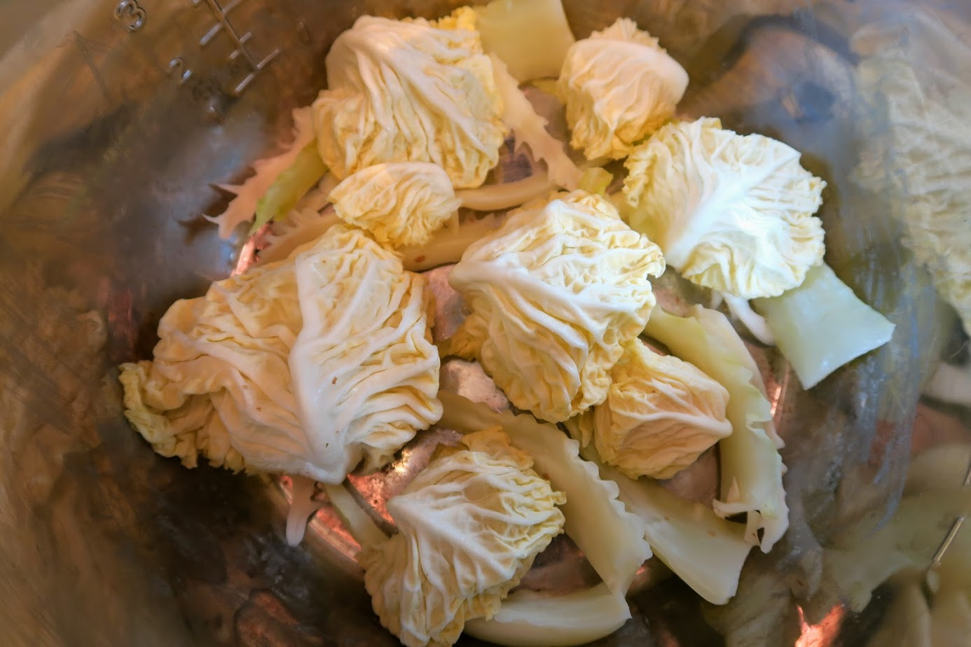 Cabbage scraps layered evenly in the bottom of the Instant Pot