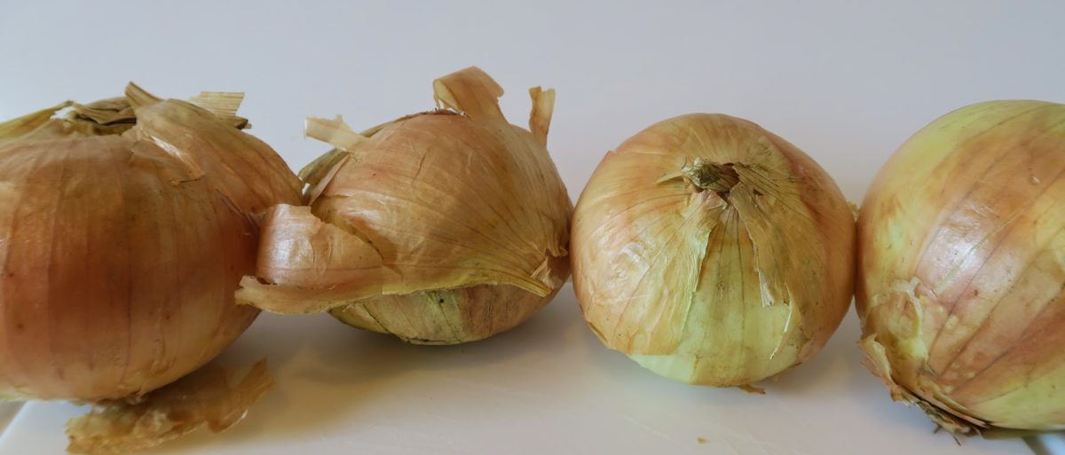 Four messy raw onions still with the skin on