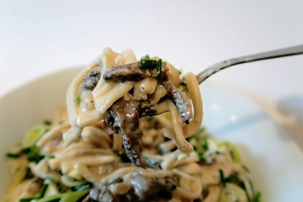 Mixed mushrooms in cream with rustic egg noodles