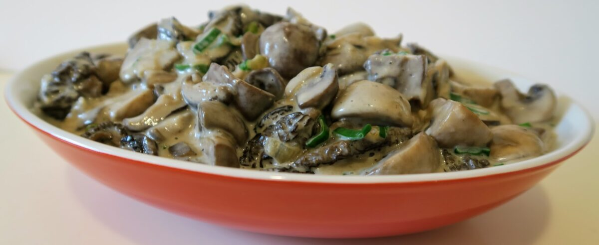 Summertime Morel and Mixed Mushrooms in Cream